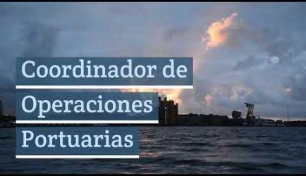 Operador de Grúas de Puerto: salidas laborales en las que ejercerás