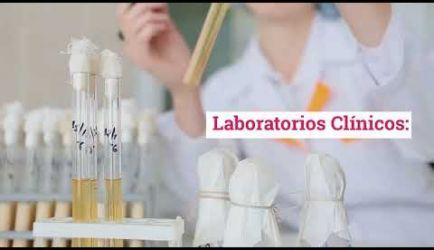 ¿Dónde puede ejercer un graduado a Distancia de Técnico en Microbiología? Te facilitamos toda la información
